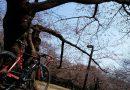 4月5日(水)・6日(木)bikeport横浜西口店WeeklyRide 中止のお知らせ